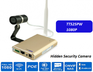 Hidden Security IP Camera